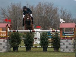Arezzo Equestrian Centre
